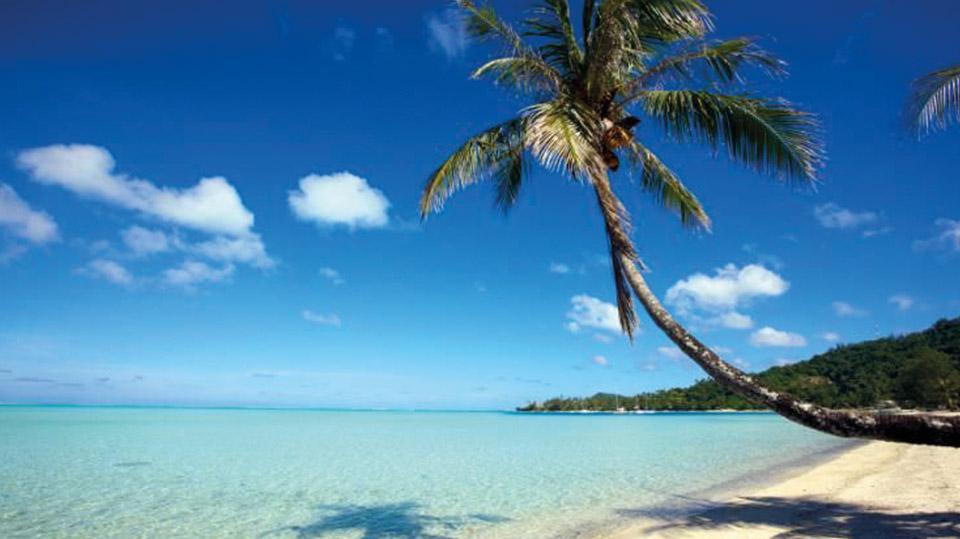 De macht van de voedingsindustrie en wat de Tokelau-eilandengroep ons leert over gezonde voeding